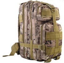 Banshee Kryptic back pack